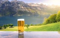 杯在夏天高山风景的啤酒 免版税库存照片
