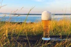 杯在日落的冰镇啤酒在麦田和蓝天背景  夏天横向 新鲜的酿造的强麦酒 免版税库存图片