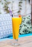 杯在木桌上的橙汁 库存图片