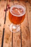 杯在条板箱的啤酒 免版税库存图片