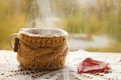 杯热的茶 免版税库存照片