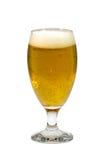 杯在白色背景的低度黄啤酒 免版税图库摄影