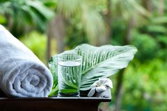 杯在美好的热带背景的淡水 免版税库存照片