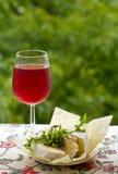 杯在自然和咸味干乳酪乳酪的红葡萄酒 免版税库存照片