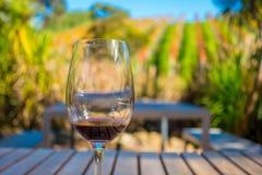 杯在葡萄园背景的红葡萄酒在waiheke海岛在奥克兰,在夏时的美丽的蓝天的 免版税库存图片