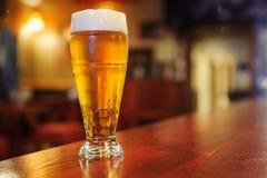杯在酒吧的啤酒 免版税库存照片