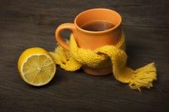 杯在围巾的茶 库存照片