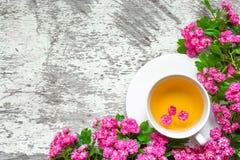 杯夏天与桃红色进展的分支的花茶在白色土气木背景 免版税库存图片