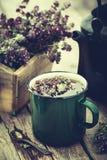 杯子健康清凉茶、老茶壶和箱麝香草开花 库存图片