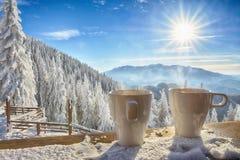杯子和冬天风景 图库摄影