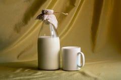 杯子和瓶牛奶 图库摄影