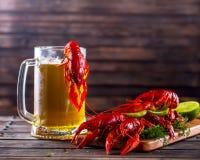 杯子啤酒和煮沸的小龙虾在一张木桌上 库存图片