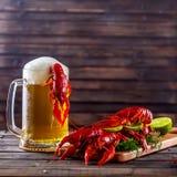 杯子啤酒和煮沸的小龙虾在一张木桌上 免版税库存照片