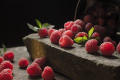 杯子在黑背景的成熟莓 免版税库存照片