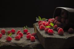 杯子在黑背景的成熟莓 免版税图库摄影