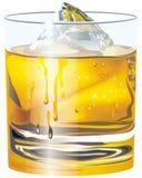 杯子威士忌酒 库存照片