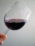 杯子实验室红葡萄酒 免版税图库摄影