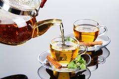 杯子新鲜的叶子造币厂的茶 免版税库存图片