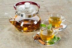 杯子新鲜的叶子造币厂的茶 库存图片