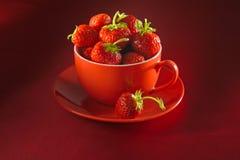 杯子板草莓 免版税库存照片