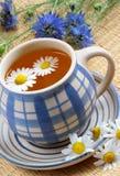 杯子清凉茶 库存照片