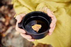 杯子热的茶在妇女手上是秋天在金黄黄色叶子的一个森林里 秋天来了,不可思议的心情 黄色叶子漂浮 免版税库存照片