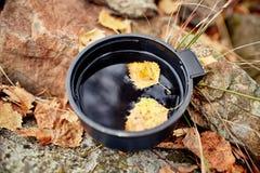 杯子热的茶是秋天在金黄黄色叶子的一个森林里 秋天来了,不可思议的心情 漂浮在茶的黄色叶子 免版税库存图片