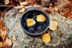 杯子热的茶是秋天在金黄黄色叶子的一个森林里 秋天来了,不可思议的心情 黄色叶子漂浮 免版税库存照片