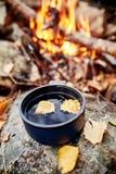 杯子热的茶是秋天在金黄黄色叶子的一个森林里 秋天来了,不可思议的心情 黄色叶子漂浮 免版税图库摄影