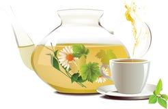杯子玻璃茶茶壶 免版税图库摄影