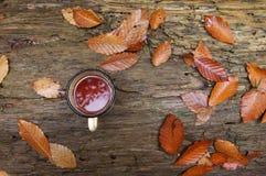 杯子用在秋叶的茶 免版税库存照片