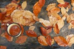 杯子用在秋叶的茶 免版税库存图片