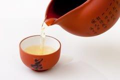 杯子研究茶 免版税库存照片