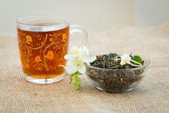 杯子茶和干绿茶与茉莉花开花 免版税库存照片
