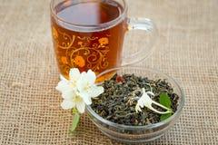 杯子茶和干绿茶与茉莉花开花 库存照片