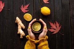 杯子茶在女性手上 柠檬、姜和秋叶 col 免版税库存照片