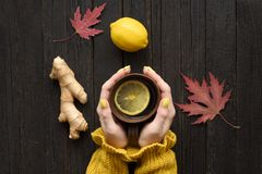 杯子茶在女性手上 柠檬、姜和秋叶 col 库存图片