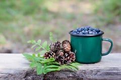杯子蓝莓和杉木锥体云杉 免版税库存图片