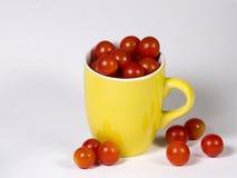 杯子蕃茄 免版税库存照片