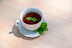 杯子造币厂的茶向量 库存图片