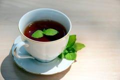 杯子造币厂的茶向量 免版税库存照片