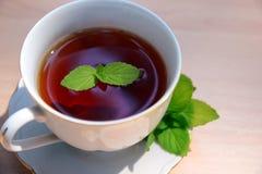 杯子造币厂的茶向量 库存照片