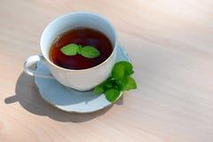 杯子造币厂的茶向量 免版税图库摄影