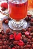 杯子野玫瑰果茶 图库摄影