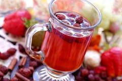 杯子野玫瑰果茶 库存照片