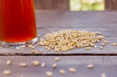 杯室外看法啤酒用在基地的麦子在一张木桌上 库存图片