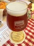 杯家酿在桌上的欧洲栗木啤酒在秋天期间 库存照片