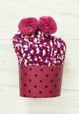 以杯形蛋糕、秀丽和时尚的形式被编织的袜子 库存图片