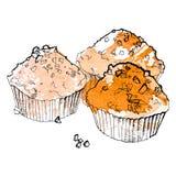 杯形蛋糕传染媒介例证 免版税库存图片