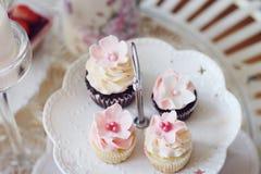 杯形蛋糕和微型杯形蛋糕 免版税库存图片
